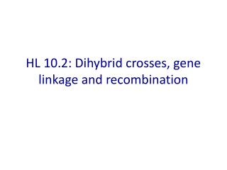 HL 10.2:  Dihybrid  crosses, gene linkage and recombination