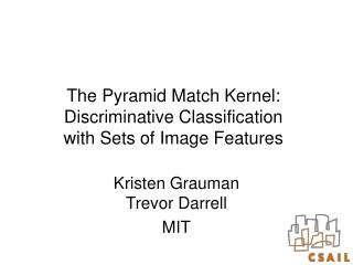 The Pyramid Match Kernel: Discriminative Classification with Sets of Image Features
