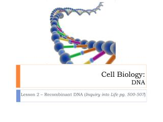 Cell Biology: DNA