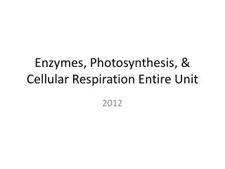 Enzymes, Photosynthesis, & Cellular Respiration Entire Unit