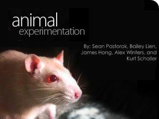 By: Sean  Pastorok , Bailey Lien, James Hong, Alex Winters, and Kurt Schaller