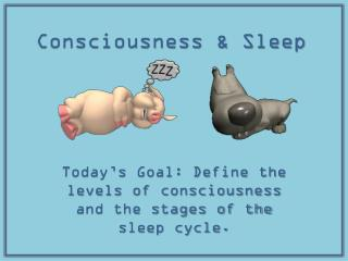 Consciousness & Sleep