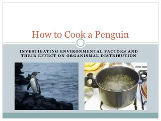 How to Cook a Penguin