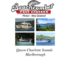 Queen Charlotte Sounds                     Marlborough