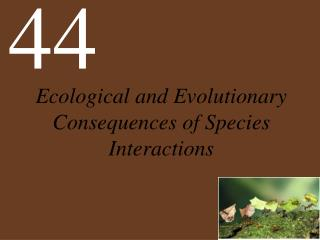 Ecological and Evolutionary Consequences of Species Interactions