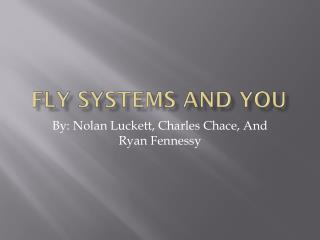FLY SYSTEMS AND YOU