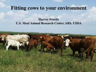 Fitting cows to your environment Harvey Freetly U.S. Meat Animal Research Center, ARS, USDA