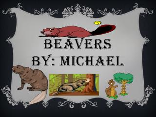 Beavers By: Michael