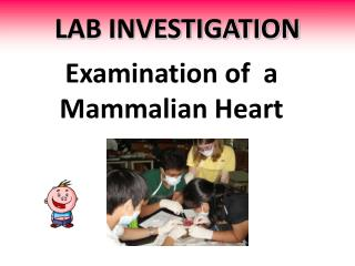 LAB INVESTIGATION