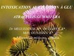 INTOXICATION AU CHARDON   GLU  ATRACTYLIS GUMMIFERA