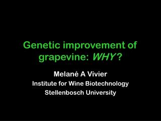 Genetic improvement of grapevine:  WHY  ?