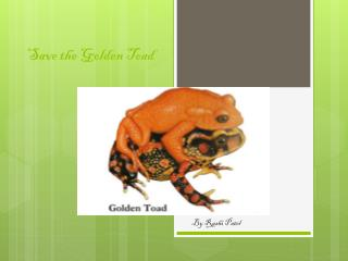 Save the Golden Toad