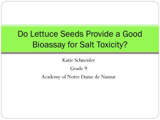 Do Lettuce Seeds Provide a Good Bioassay for Salt Toxicity?