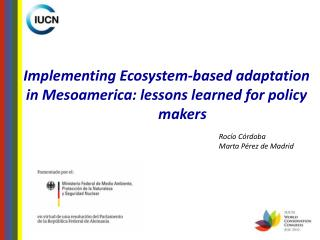 Implementing Ecosystem-based adaptation in Mesoamerica: lessons learned for policy 	makers