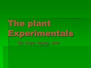 The plant Experimentals