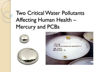 Two Critical Water Pollutants Affecting Human Health – Mercury and PCBs
