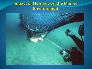 Impact of Humans on the Marine Environment