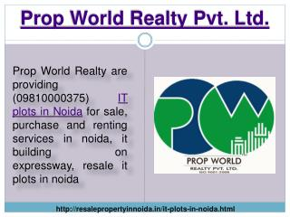 IT Plot for Sale in Noida Expressway, IT Plots in Noida