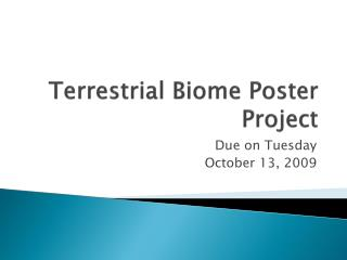 Terrestrial Biome Poster Project