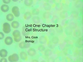 Unit One- Chapter 3 Cell Structure