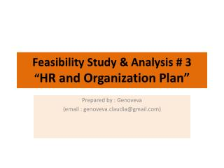 "Feasibility Study & Analysis # 3 "" HR  and  Organization Plan"""