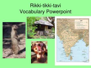 Rikki-tikki-tavi Vocabulary Powerpoint