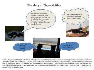 The story of Itsy and Bitsy