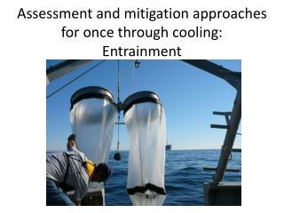 Assessment and mitigation approaches for once through cooling: Entrainment