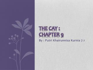The Cay : chapter 9