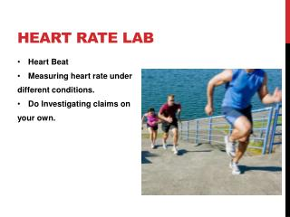 Heart Rate Lab