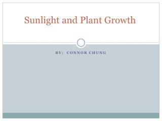 Sunlight and Plant Growth