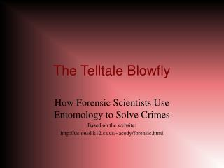 The Telltale Blowfly