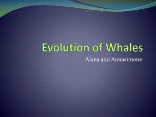 Evolution of Whales