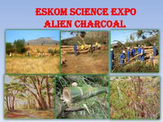 Eskom Science  Expo Alien Charcoal