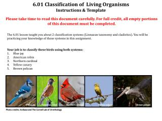 6.01 Classification of  Living Organisms  Instructions & Template