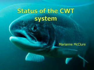 Status of the CWT system