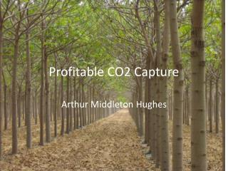 Profitable CO2 Capture