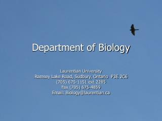 Department of Biology