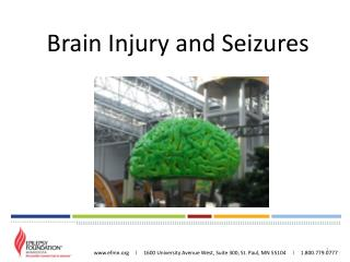Brain Injury and Seizures