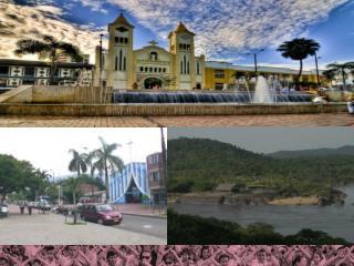 Asistencia técnica  Departamento de Meta, Casanare, Arauca y Vichada Monitoreo al SGP-APSB