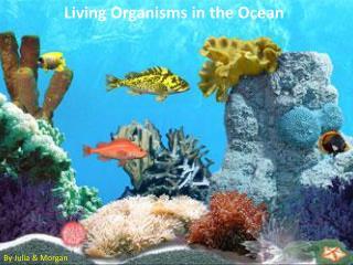 Living Organisms in the Ocean
