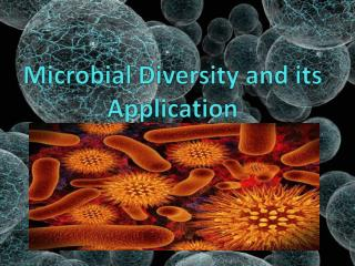 Microbial Diversity and its Application