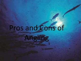 Pros and Cons of Angling