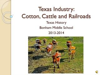 Texas Industry:  Cotton, Cattle and Railroads