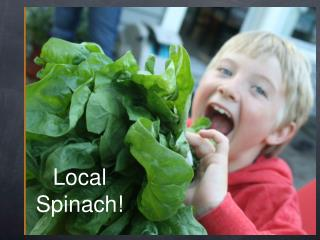 Local  Spinach!