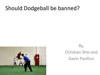 Should Dodgeball be banned?