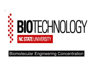 Biomolecular Engineering Concentration