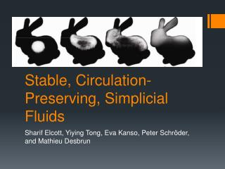 Stable, Circulation-Preserving,  Simplicial  Fluids