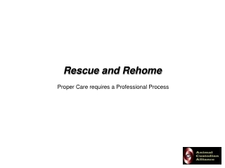 Rescue and Rehome