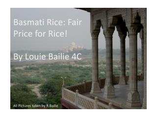 Basmati Rice: Fair Price for Rice ! By  Louie Bailie 4C